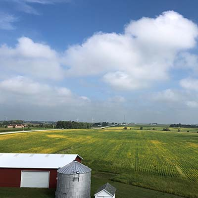 Organic Grain Storage and Organic Farm Field